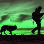 Aktiverleben mit Hund